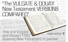 The Latin Vulgate and Dopuay (1582 Rheims) New Testaments Compared - published in parallel formate for comparison.